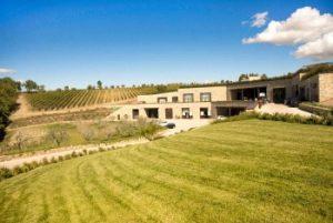 Estate tra le vigne di Vallepicciola
