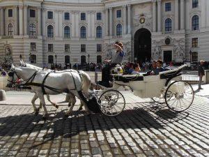 un calesse davanti alla Hofburg